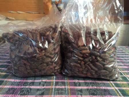 And we get cacao beans!