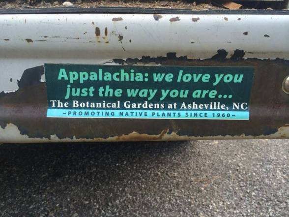 botanical bumper
